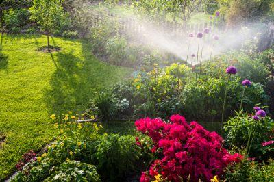 sprinkler watering garden