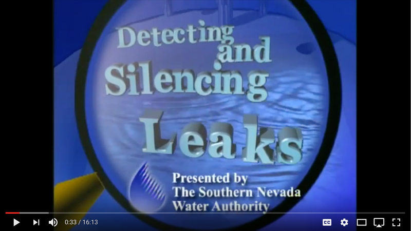 Detecting and Silencing Leaks Video Thumbnail Image